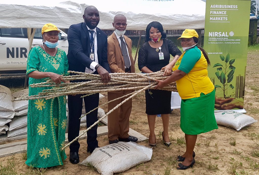 NIRSAL empowers 475 Female Cassava Farmers In South South